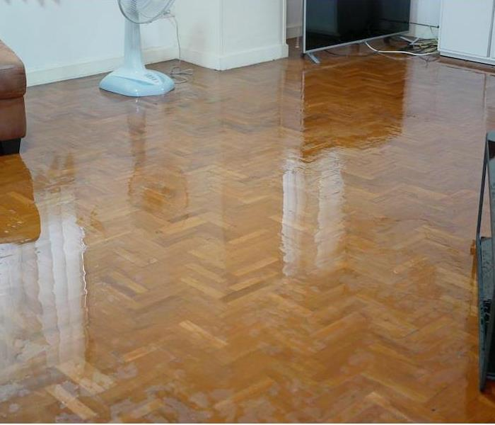 Water spreading / flooding on the parquet floor of a house